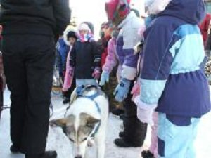 Kids with sled dog