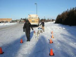 Leader with sled dog